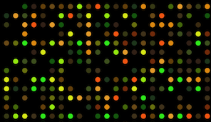 pic DNA microarray