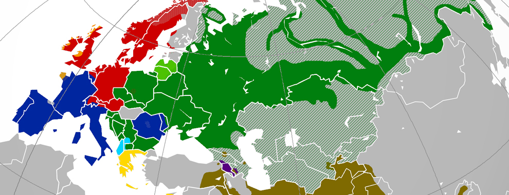Mapping the birthplace of the world's largest language family